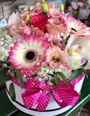 Flowerbox Kristína
